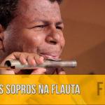 Como Aprender a Tocar Flauta: Embocadura